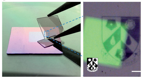 Nanopixel displays with 150 times higher resolution – and they're flexible, too | ExtremeTech | leapmind | Scoop.it