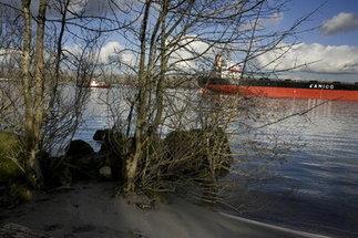 Portland has authority to regulate waterfront, Oregon Supreme Court ... | Portland Oregon Mayor Sam Adams | Scoop.it
