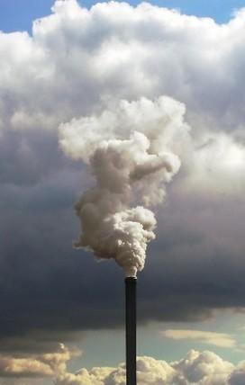 Brasil /Poluição: um problema de saúde pública. Entrevista especial com Paulo Saldiva | ivana | Scoop.it