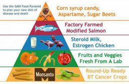 The paleo diet – why I support it and why you should too ... | Healthy Eating | Scoop.it