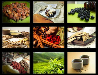 treatment for kidney disease: Micro-Chinese Medicine Osmotherapy for Kidney Disease | kidney disease | Scoop.it