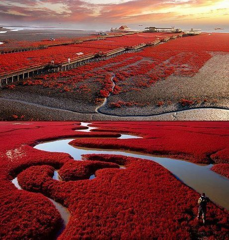 The 15 Most Surreal Destinations to Visit in 2015 | Travel | Scoop.it