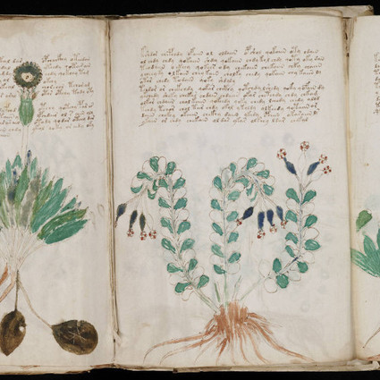 Finally, a Use for Big Data: Cracking the Voynich Manuscript - Motherboard | Big Data & Twitter Research | Scoop.it