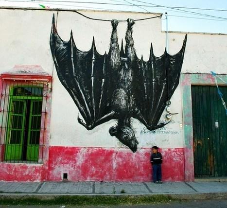 Street Art Cities: Mexico City | Alfredo Nardelli | Scoop.it