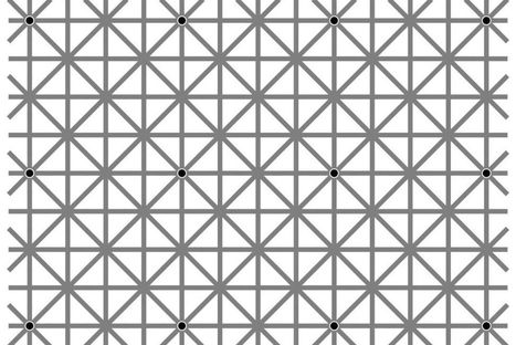 Here's why you can't see all twelve black dots in this optical illusion   Tudo o resto   Scoop.it