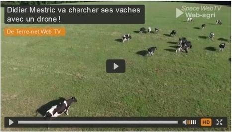 Insolite Didier Mestric va chercher ses vaches avec un drone ! | Agroéquipement | Scoop.it