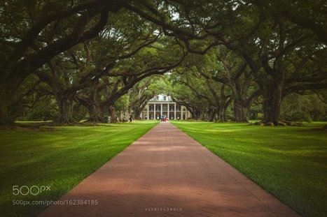 Tweet from @Iconjurer | Oak Alley Plantation: Things to see! | Scoop.it