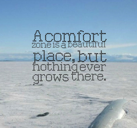 A comfort zone is a beautiful place, but nothing ever grows there. | Picture Quotes and Proverbs | Scoop.it