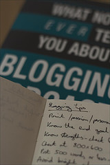 » The best blog niches to be in right now | Content Strategy |Brand Development |Organic SEO | Scoop.it