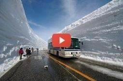 VIDEO !! Cum se face deszapezirea în Japonia   VDroll   Scoop.it