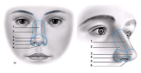 Nâng mũi - các phương pháp nâng mũi phổ biến | Khoa thẩm mỹ công nghệ cao | nguyenphan | Scoop.it