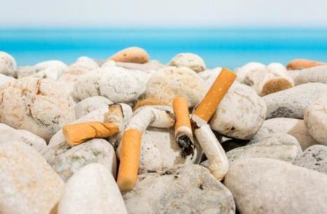 L'ONU défend une taxe sur le tabac pour financer le développement durable | Planete DDurable | Scoop.it