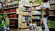 Pets join in on the organic food trend | Food for Pets | Scoop.it