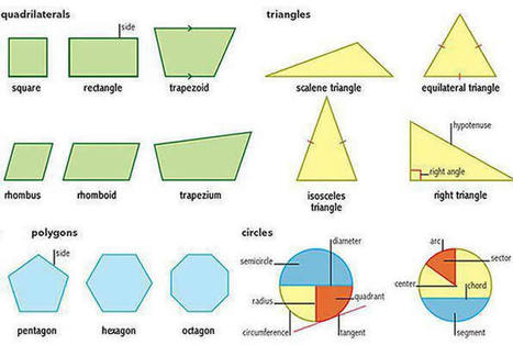 Learning shapes triangles circles polygons quadrilaterals | Geometry Notes | Scoop.it
