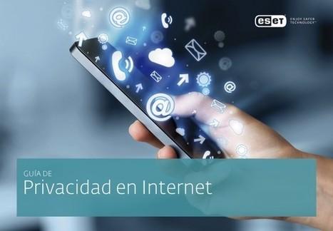 Nueva Guía de Privacidad en Internet, para que protejas tu identidad en la web | TICE Tecnologías de la Información y la Comunicación en Educación | Scoop.it