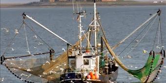 Todo sobre Panamá, noticias de actualidad: Panamá exige la devolución del barco a Ecuador | Noticias de Panamá | Scoop.it