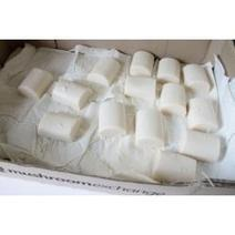 Easy recipe for Coconut milk soap | Writer of various subjects | Scoop.it