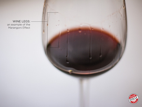 Find Out What Wine Legs Indicate | Wine Folly | Table 16 | Scoop.it