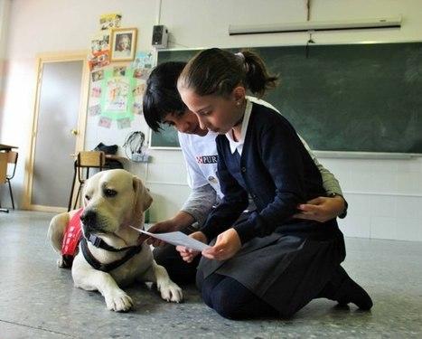 Cómo los perros pueden ayudar a leer a tus hijos | Personas y Animales | Scoop.it