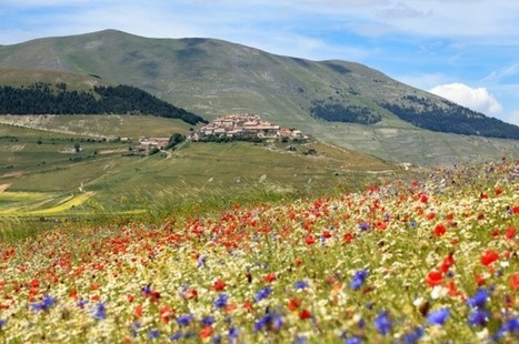 Spoleto - Castelluccio di Norcia among the Europe's 10 most beautiful drives | Italia Mia | Scoop.it