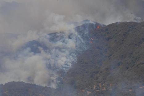 Department of Forests - Forest Fires | Forest Fires | Scoop.it