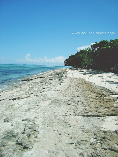 Selfless Travels: Quick Guide to Canigao Island in Leyte | Philippine Travel | Scoop.it