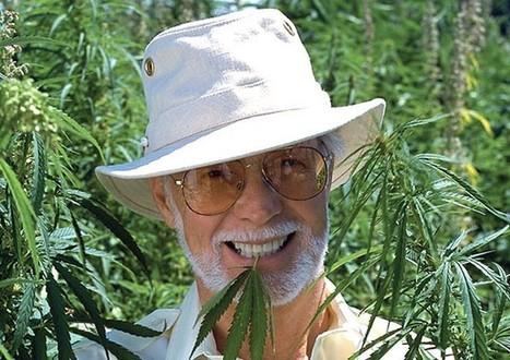 Les cannabinoïdes de la marijuana ralentissent la dégradation du cerveau - Esprit Science Métaphysiques | Santé | Scoop.it