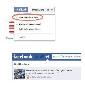 Facebook EdgeRank Truth: Page Feed Reach and Promoted Posts | Social Marketing Revolution | Scoop.it