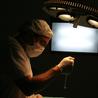 Dr Griffiths  el mejor cirujano de trasplante capilar