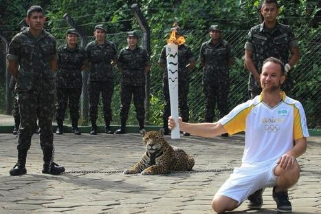 Jeux Olympiques Rio 2016: Un jaguar sacrifié au passage de la flamme | Chronique d'un pays où il ne se passe rien... ou presque ! | Scoop.it