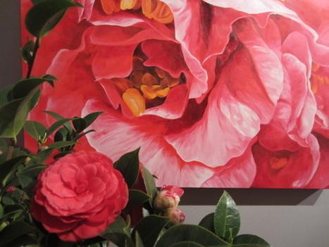 Camelie e arte a Lucca - Giardinaggio Web | About gardening | Scoop.it