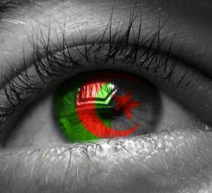 L'Algérie au temps des révolutions arabes - La Cour Des Infos   Revolution Digitale Algérienne   Scoop.it