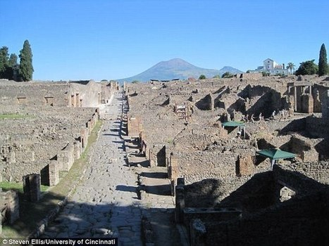 Latrines, sewers show varied ancient Roman diet | AncientHistory@CHHS 2012-13 | Scoop.it
