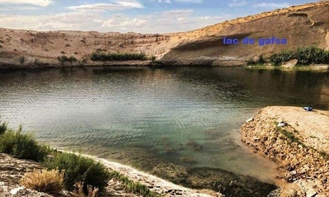 Mysterious lake appears in Tunisian desert | Quite Interesting News | Scoop.it