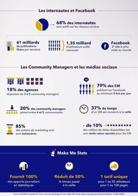 CM, MakemeStats veut vous simplifier Facebook - Balises Infos   Réseaux et médias sociaux, veille, technique et outils   Scoop.it