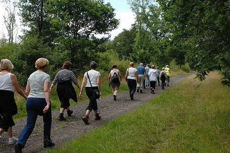 Walking: The best exercise   www.paleomessenger.com   Scoop.it