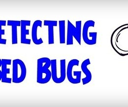 ULTIMATE Guide on How To Detect Bed Bugs | Detecting a Bed Bug Infestation | Animal Repellents and DIY Pest Control Solutions | Scoop.it