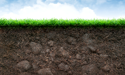 Soil Microbes Alter DNA in Response to Climate Change | EcoWatch | Papers | Scoop.it
