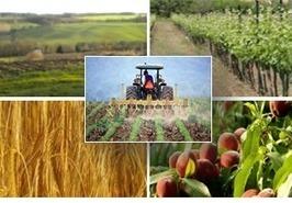 Quels intrants pour une agro-écologie durable ? Chaire AgroSYS, Montpellier SupAgro | Agronomie, élevage, eau et sol - Montpellier SupAgro | Scoop.it