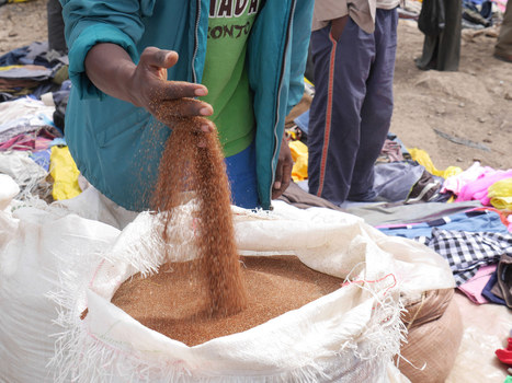 Ethiopie : « Nous n'avons pas besoin d'aide, mais d'investissements » | Géopolitique de l'Afrique | Scoop.it