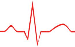 Drano For Your Heart « CBS Denver   alternative health   Scoop.it