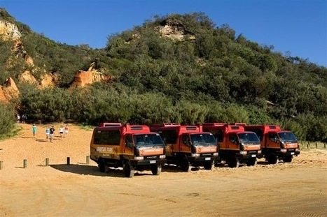 A fabulous tour to Fraser Island   Resort   Scoop.it