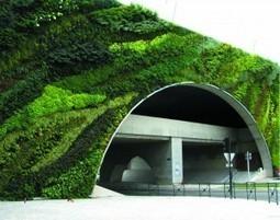 Muros verdes, entre la decoración y el cuidado del medio ambiente ... | Jardines Verticales y azoteas verdes. | Scoop.it
