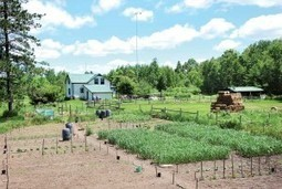 How to Build a Survivalist Homestead - A Complete Guide   BOB to BOL by BOV   Scoop.it
