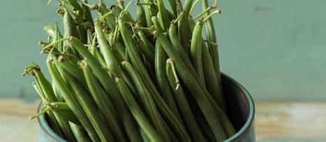 Un chef, un produit : le haricot vert | The fisheye of gourmet food & wine! | Scoop.it