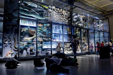 Kulturprojekte Berlin —Presse | [New] Media Art Education & Research | Scoop.it