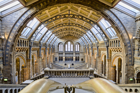 Natural History Museum: 'We hope people will discover new species with our open data' | Science et société | Scoop.it