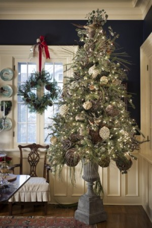 Decorate for the holidays with a nod to nature - Sioux City Journal   Eye on Green Magazine   Scoop.it