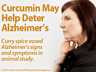 Curcumin Eased Alzheimer's in Animals | Healthy Recipes and Tips for Healthy Living | Scoop.it