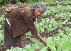 In Kenya, Improving Food Security and HIV Outcomes through Farming   Sustainable Futures   Scoop.it
